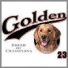 Dog Breed Golden Retriever T-Shirt