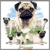 Dog Breed Pug T-Shirt