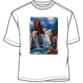 Waterfall and soaring Bald Eagle tees