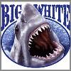 Great White Shark tee shirt