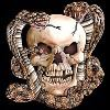Snakes and Skull T-Shirt