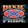 Southern pride t-shirts for those who love Dixie and are proud to be from the South.