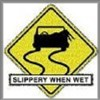 Raglan T-Shirt Slippery When Wet