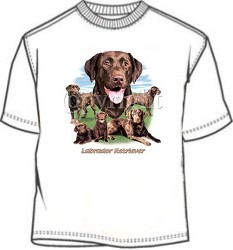 Chocolate Labrador Retriever tees