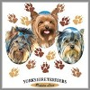 Yorkie Dog Breed T-Shirt